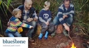 bluestone family offers 2015